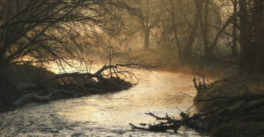 Sunrise and Mist on the Humber River