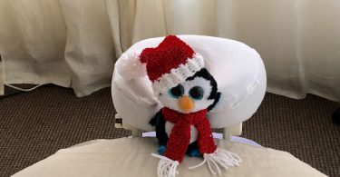 Chilly the Penguin getting Massage