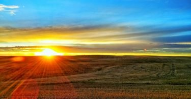Sun going down on Farmland