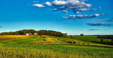 Countryside and farm