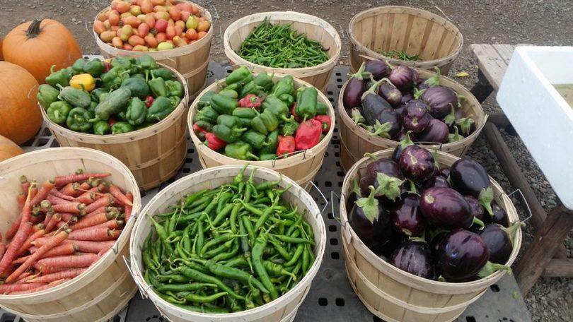 Baskets of veggies