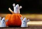 Pumpkin Little Ghosts