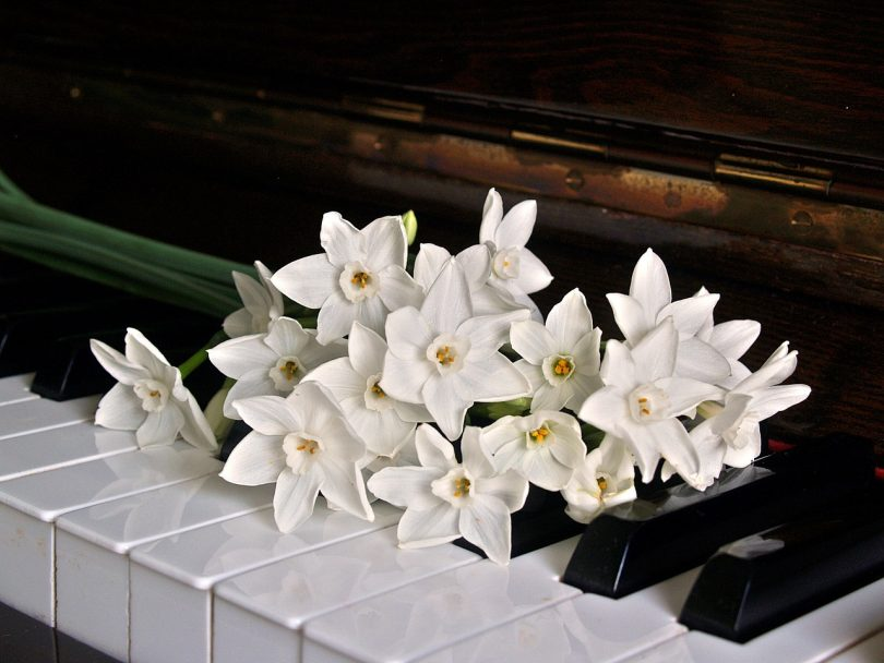 Keyboard and flowers