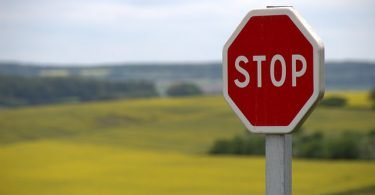 Stop Sign and Field