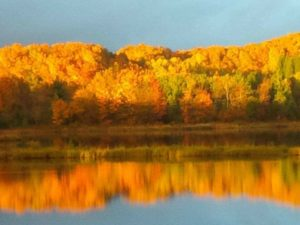 Lake on Mount Hope by Tina Howe