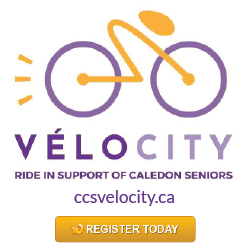 CCS Velocity ad